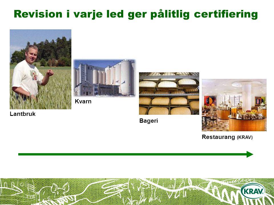 Revision i varje led ger pålitlig certifiering