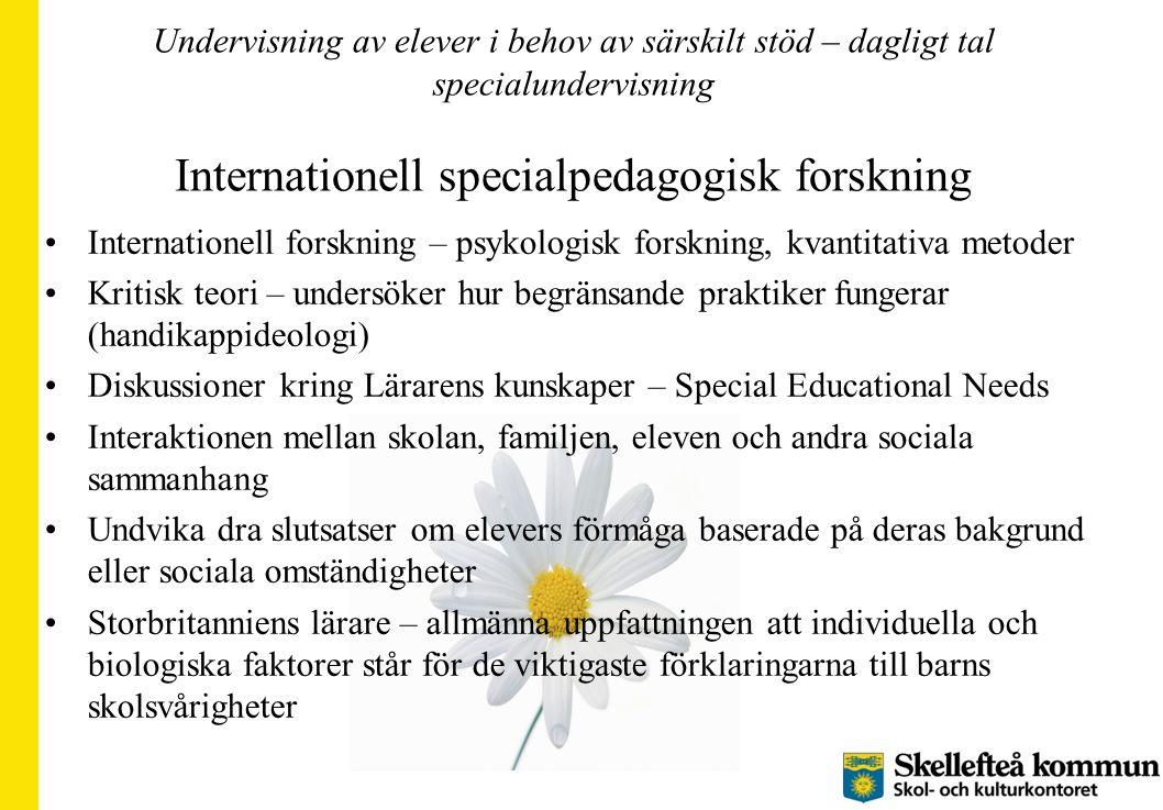 Undervisning av elever i behov av särskilt stöd – dagligt tal specialundervisning Internationell specialpedagogisk forskning