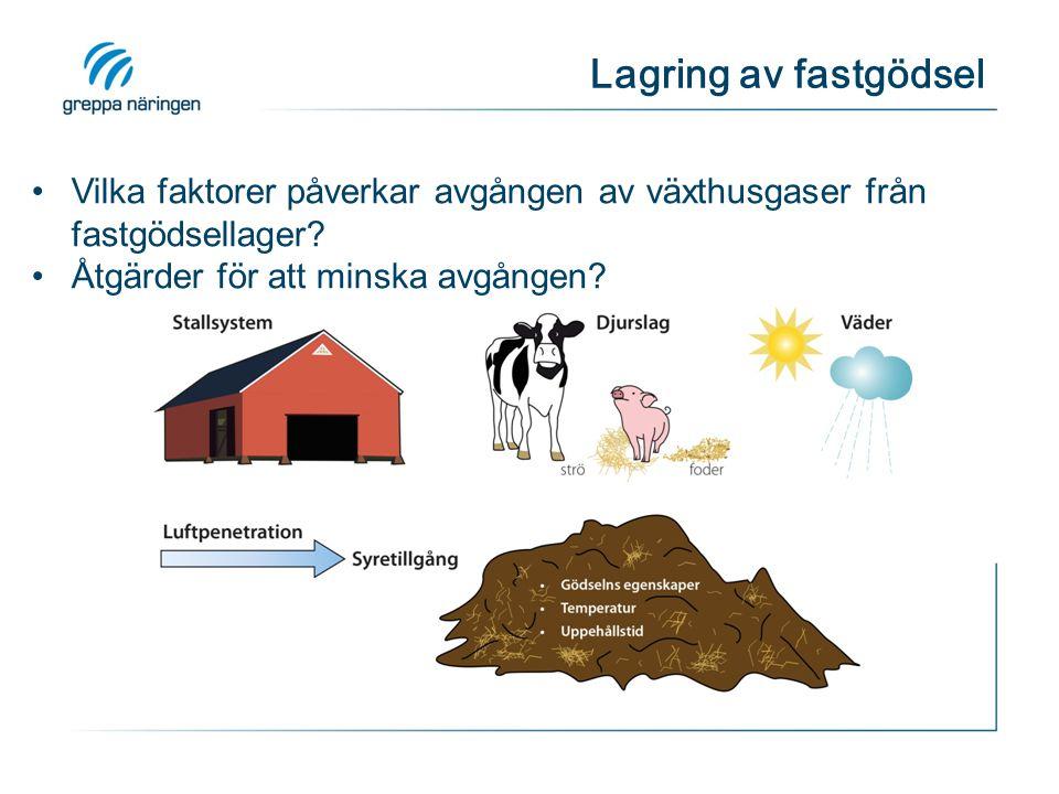 Lagring av fastgödsel Vilka faktorer påverkar avgången av växthusgaser från fastgödsellager Åtgärder för att minska avgången