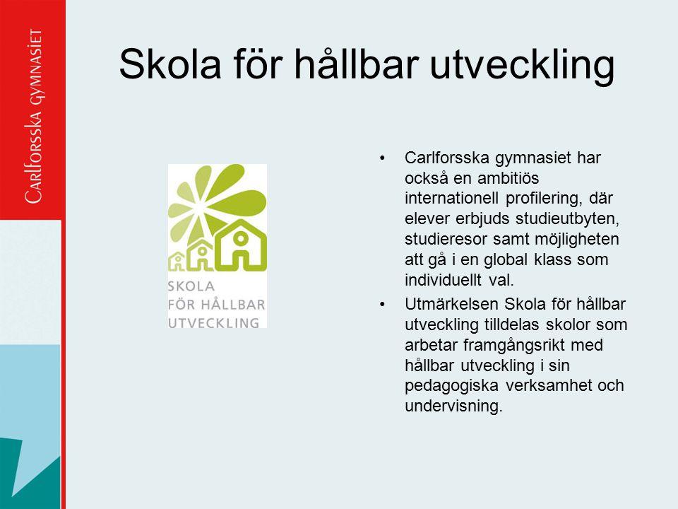 Skola för hållbar utveckling
