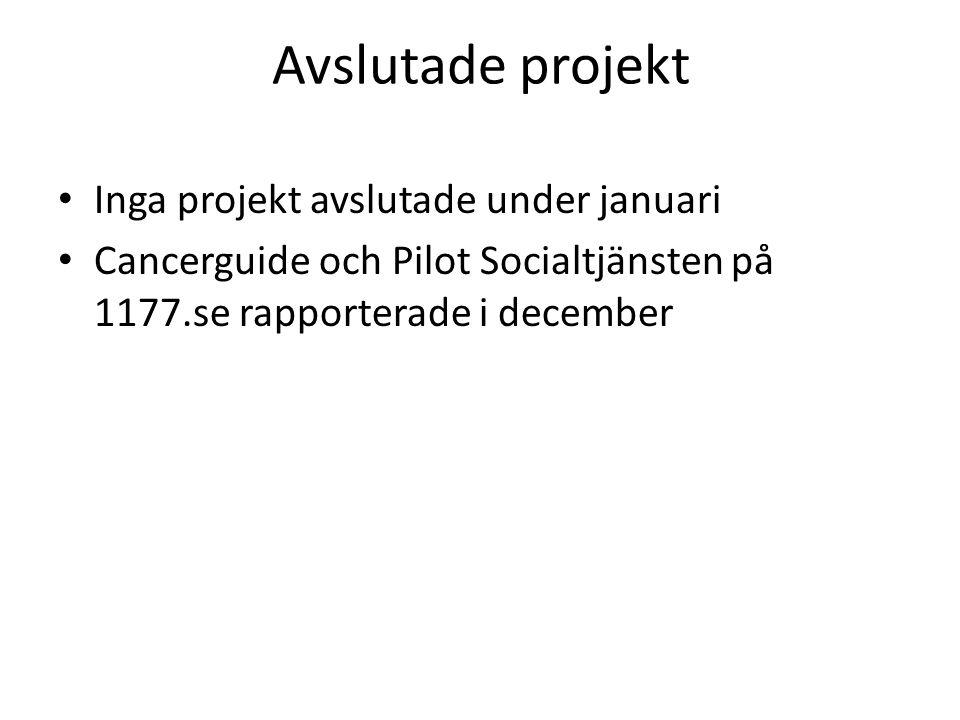 Avslutade projekt Inga projekt avslutade under januari
