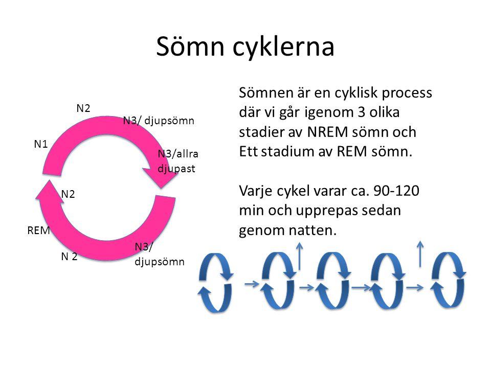 Sömn cyklerna Sömnen är en cyklisk process där vi går igenom 3 olika stadier av NREM sömn och. Ett stadium av REM sömn.
