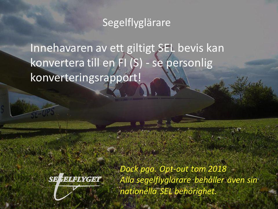 Segelflyglärare Innehavaren av ett giltigt SEL bevis kan konvertera till en FI (S) - se personlig konverteringsrapport!