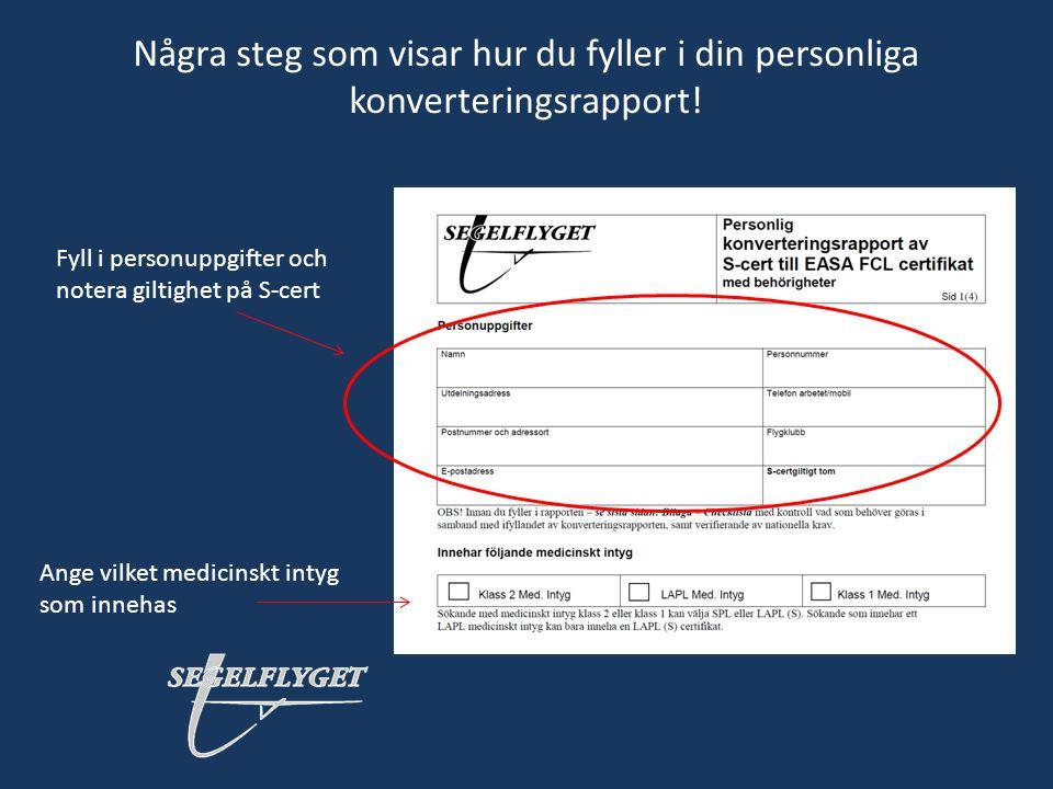 Några steg som visar hur du fyller i din personliga konverteringsrapport!