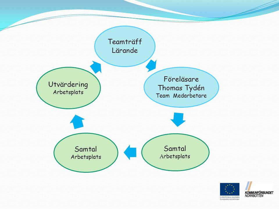 Föreläsare Thomas Tydén Team Medarbetare Samtal Arbetsplats