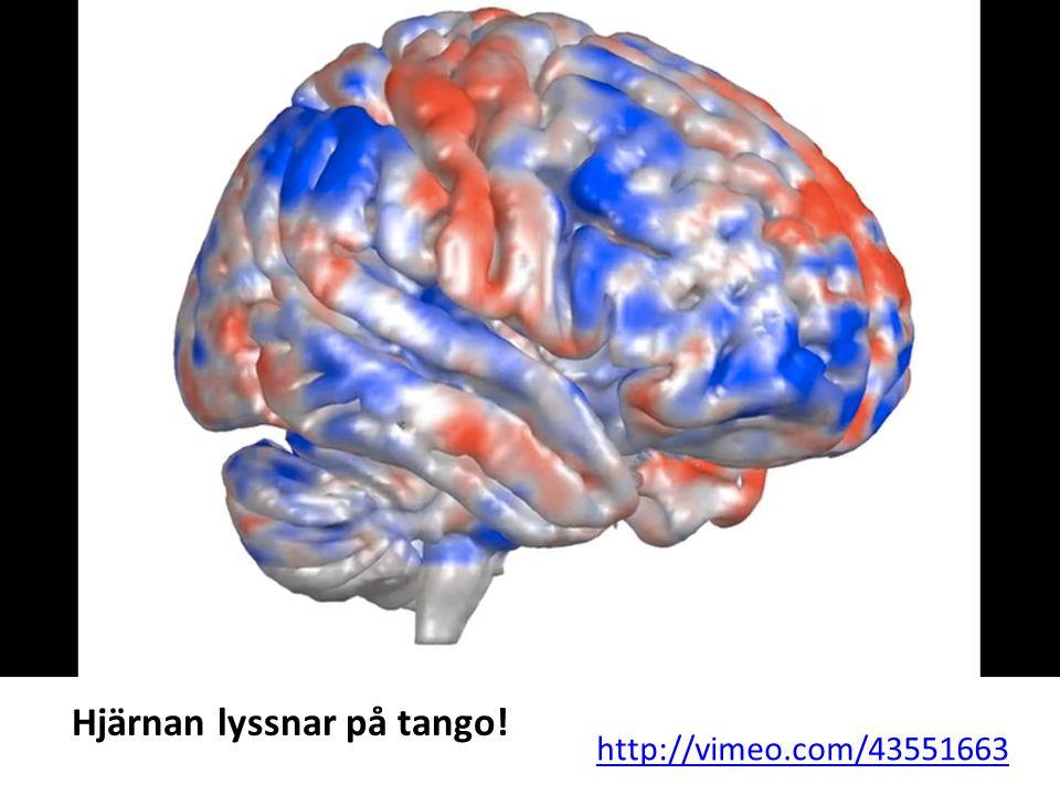 Hjärnan lyssnar på tango!