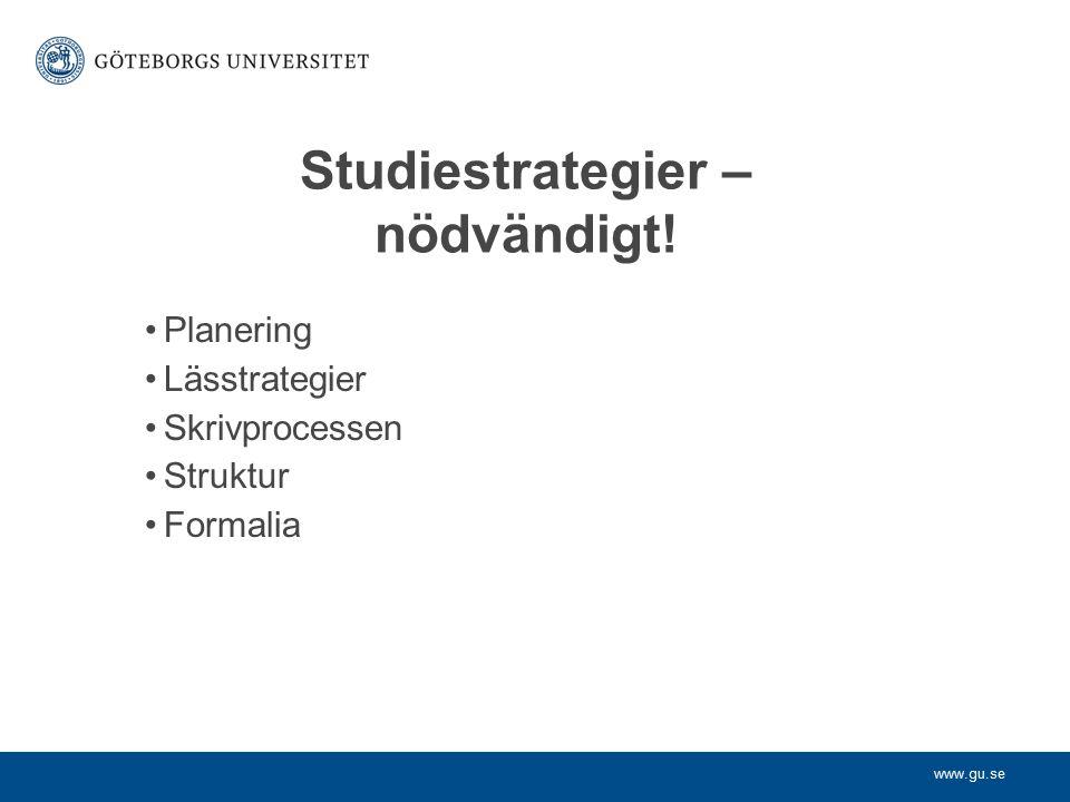 Studiestrategier – nödvändigt!
