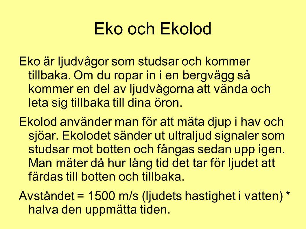 Eko och Ekolod