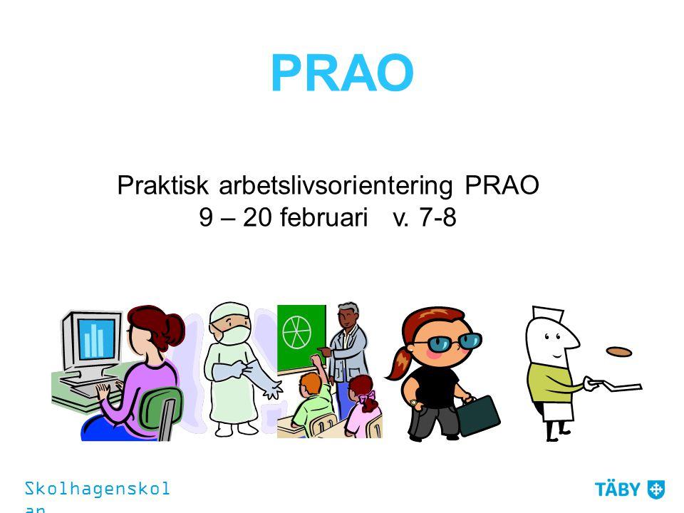Praktisk arbetslivsorientering PRAO 9 – 20 februari v. 7-8