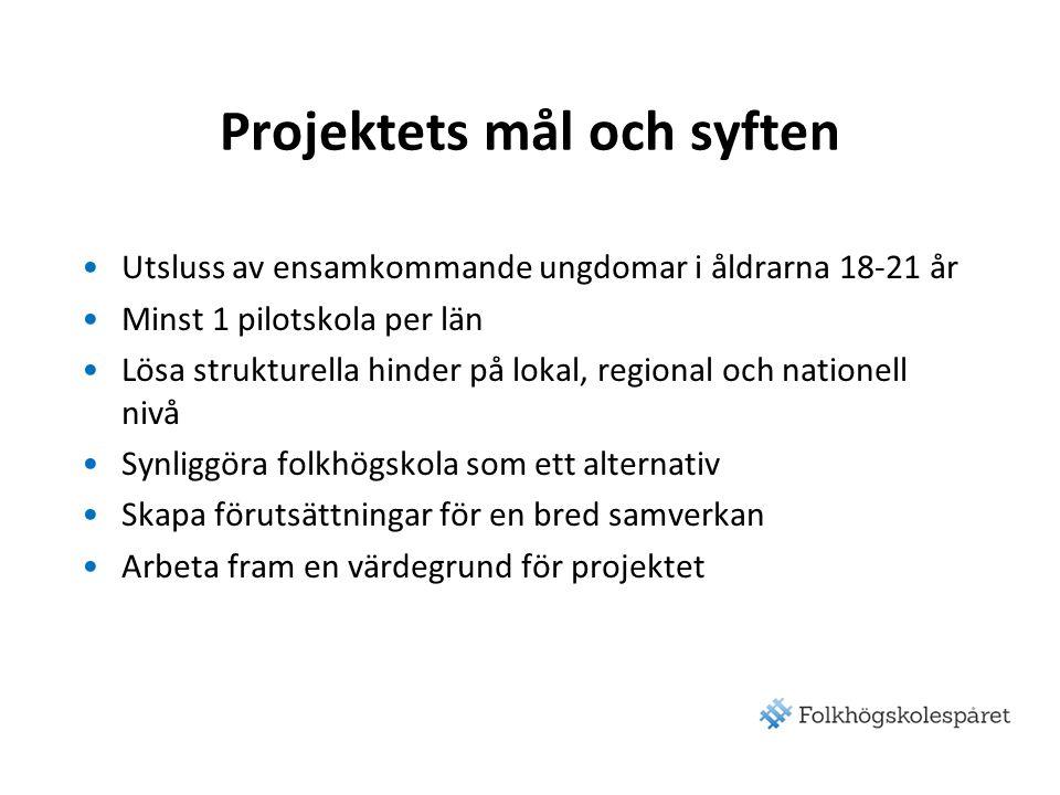 Projektets mål och syften