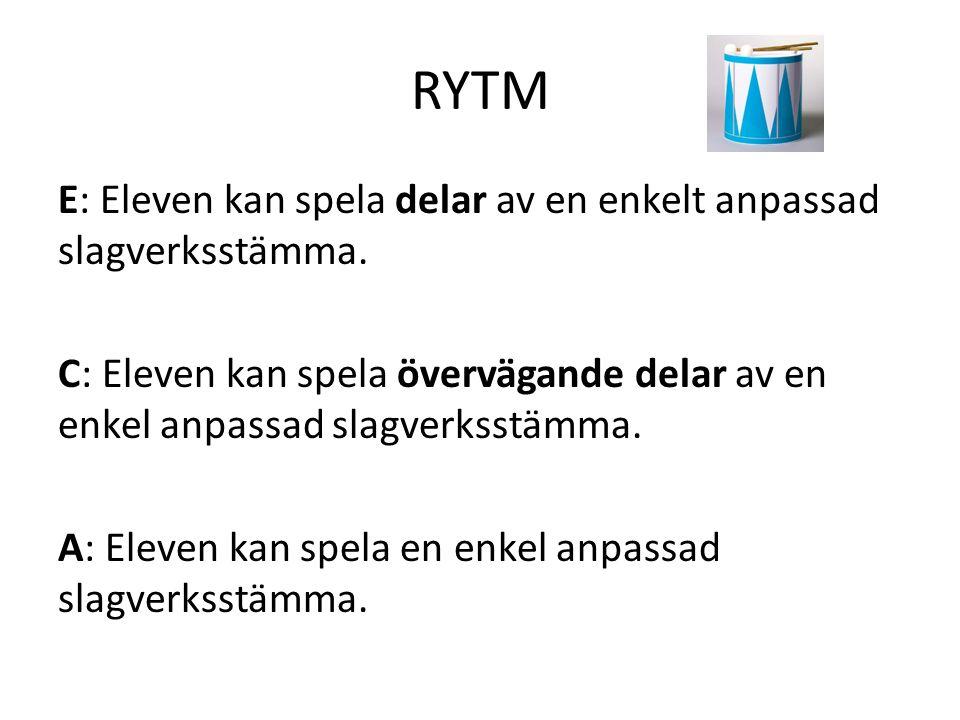 RYTM E: Eleven kan spela delar av en enkelt anpassad slagverksstämma.