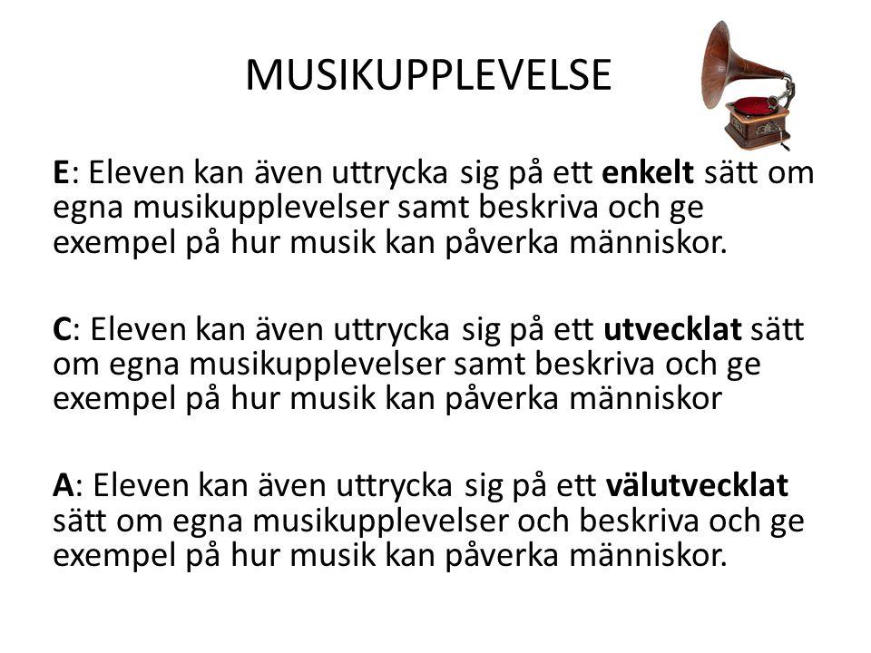 MUSIKUPPLEVELSE