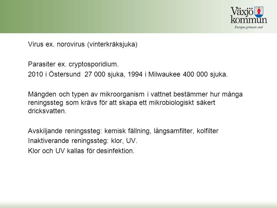 Virus ex. norovirus (vinterkräksjuka)