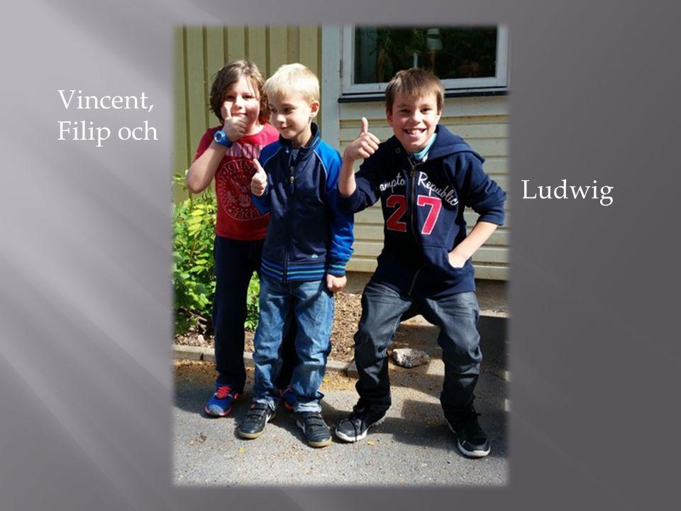 Vincent, Filip och Ludwig