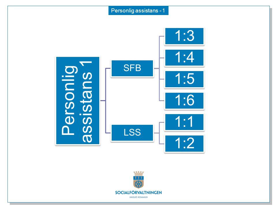 Personlig assistans 1 1:3 1:4 1:5 1:6 1:1 1:2 SFB LSS