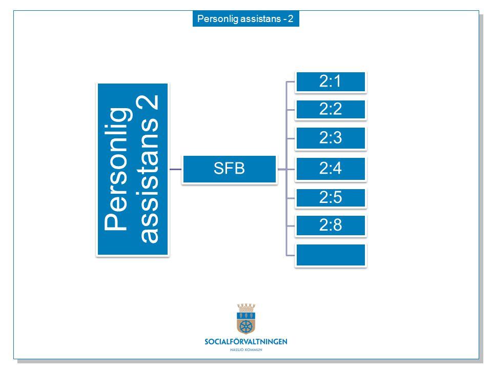 Personlig assistans 2 2:1 2:2 2:3 2:4 2:5 2:8 SFB