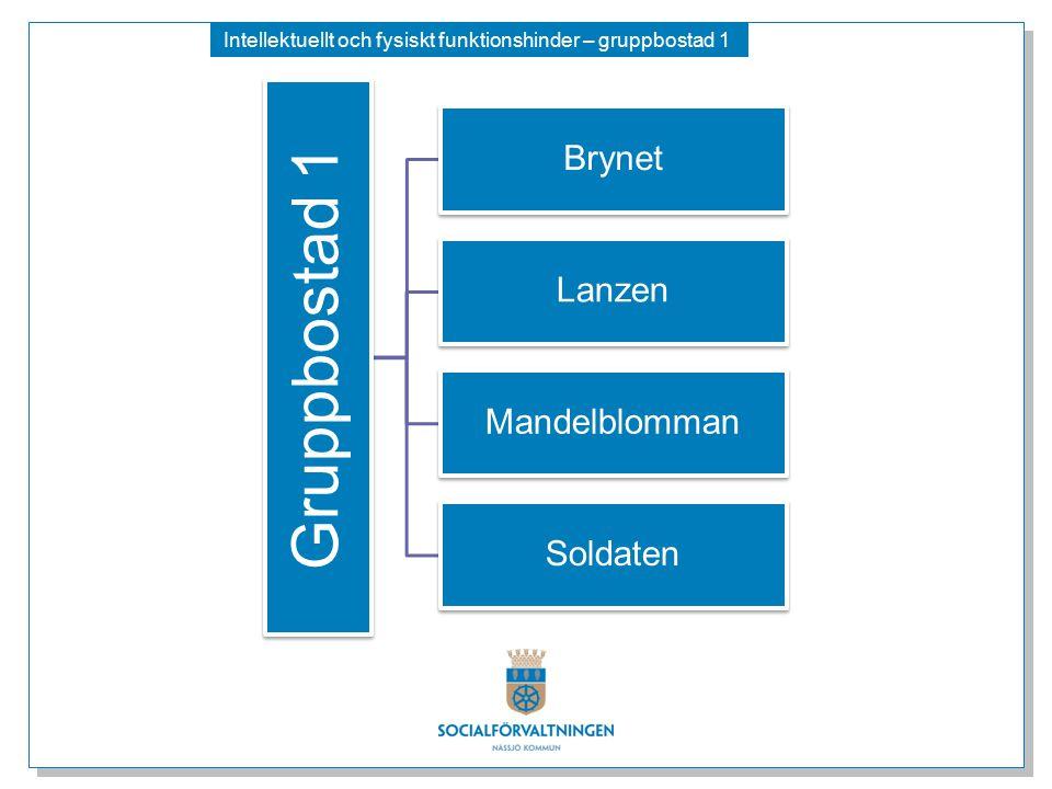 Intellektuellt och fysiskt funktionshinder – gruppbostad 1