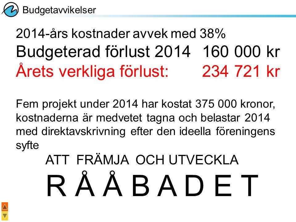 Årets verkliga förlust: 234 721 kr