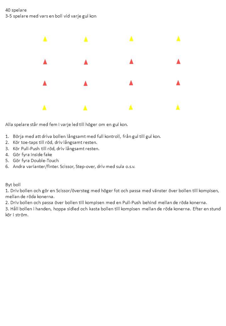 40 spelare 3-5 spelare med vars en boll vid varje gul kon. Alla spelare står med fem i varje led till höger om en gul kon.