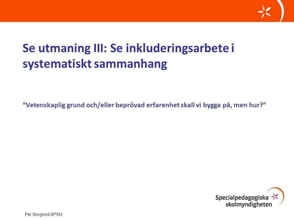 Se utmaning III: Se inkluderingsarbete i systematiskt sammanhang