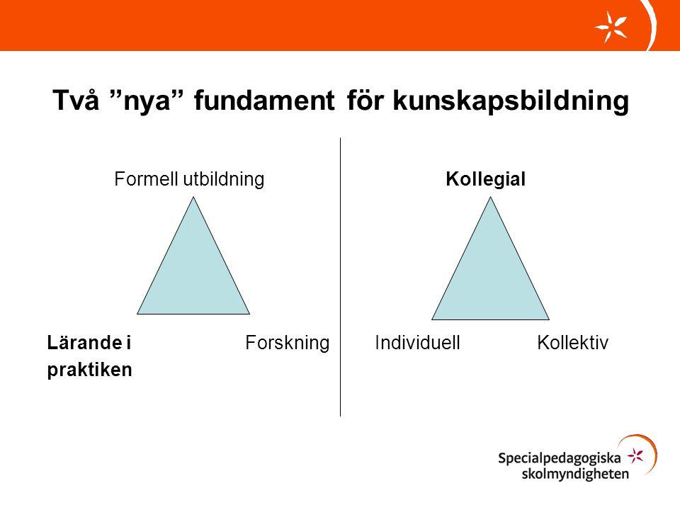 Två nya fundament för kunskapsbildning