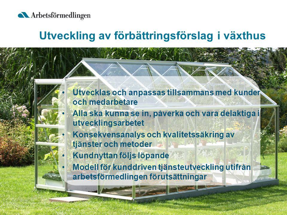 Utveckling av förbättringsförslag i växthus