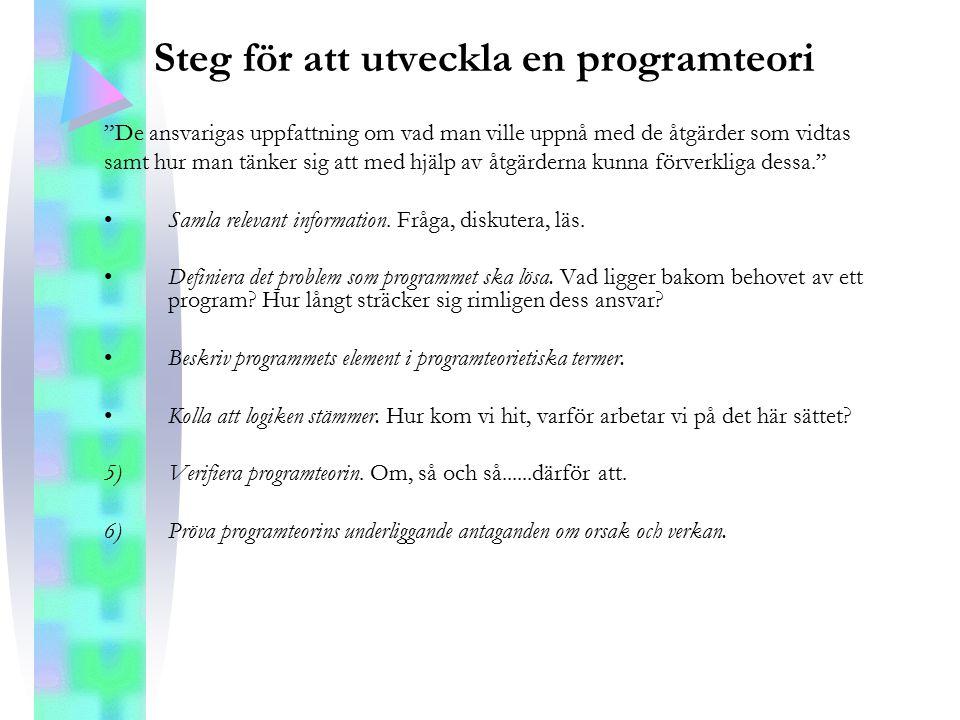 Steg för att utveckla en programteori