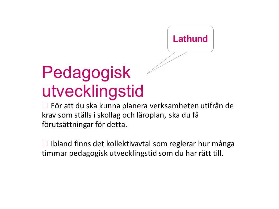 Pedagogisk utvecklingstid Lathund