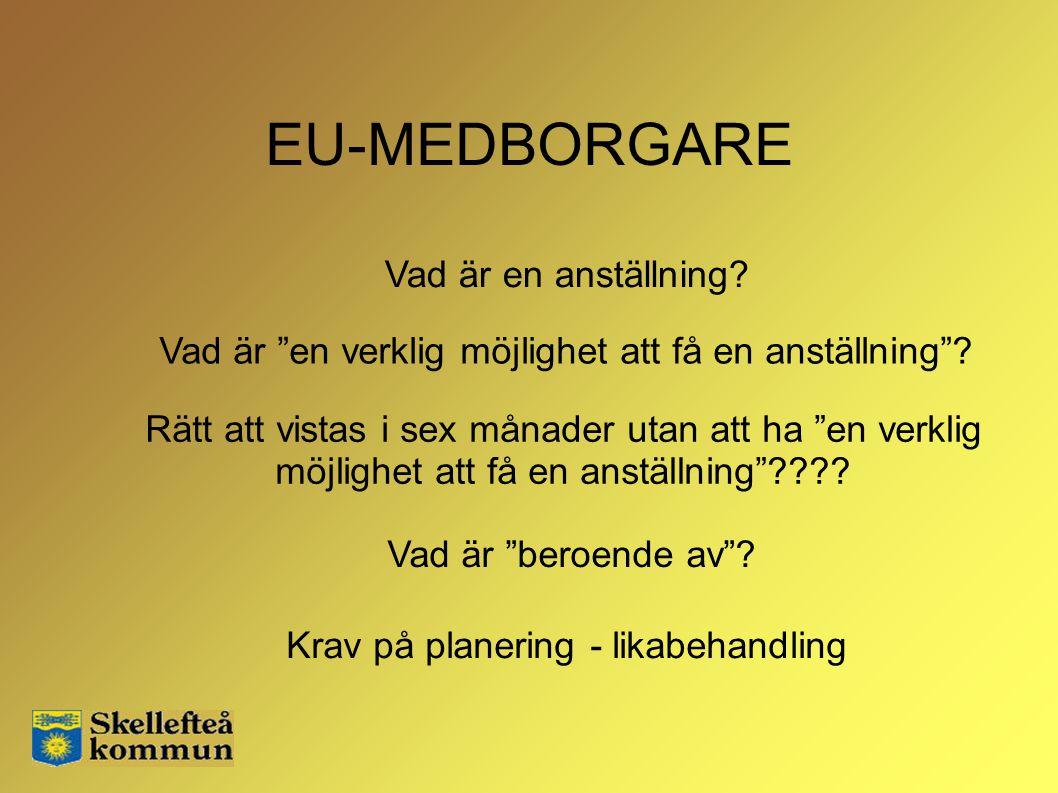 EU-MEDBORGARE Vad är en anställning