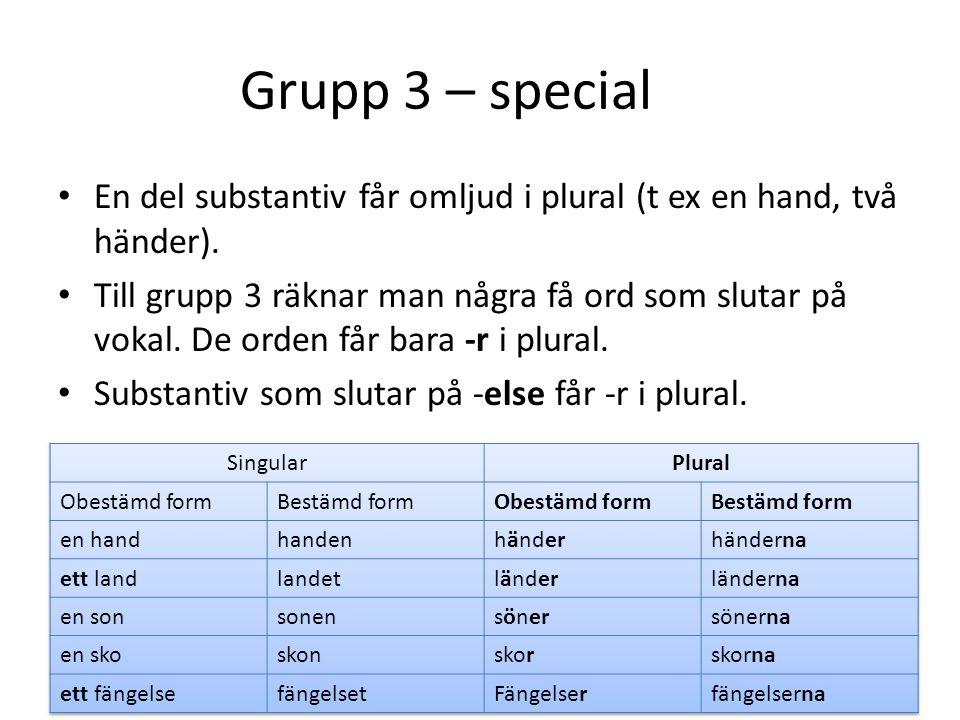 Grupp 3 – special En del substantiv får omljud i plural (t ex en hand, två händer).