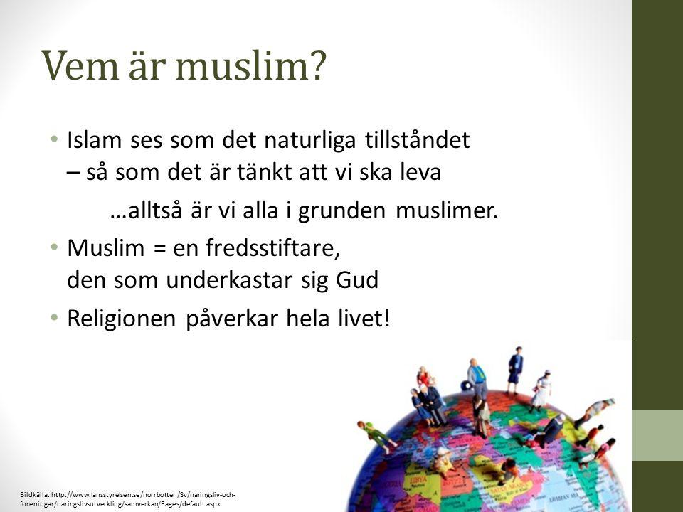 Vem är muslim Islam ses som det naturliga tillståndet – så som det är tänkt att vi ska leva. …alltså är vi alla i grunden muslimer.