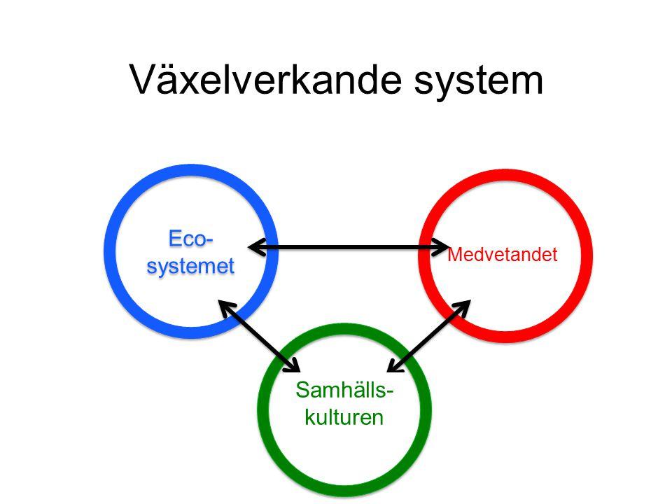 Växelverkande system Eco-systemet Individen Samhället Samhälls-