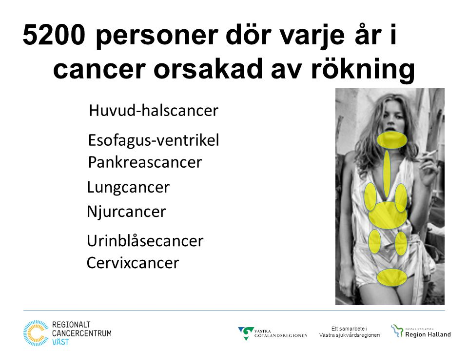 personer dör varje år i cancer orsakad av rökning