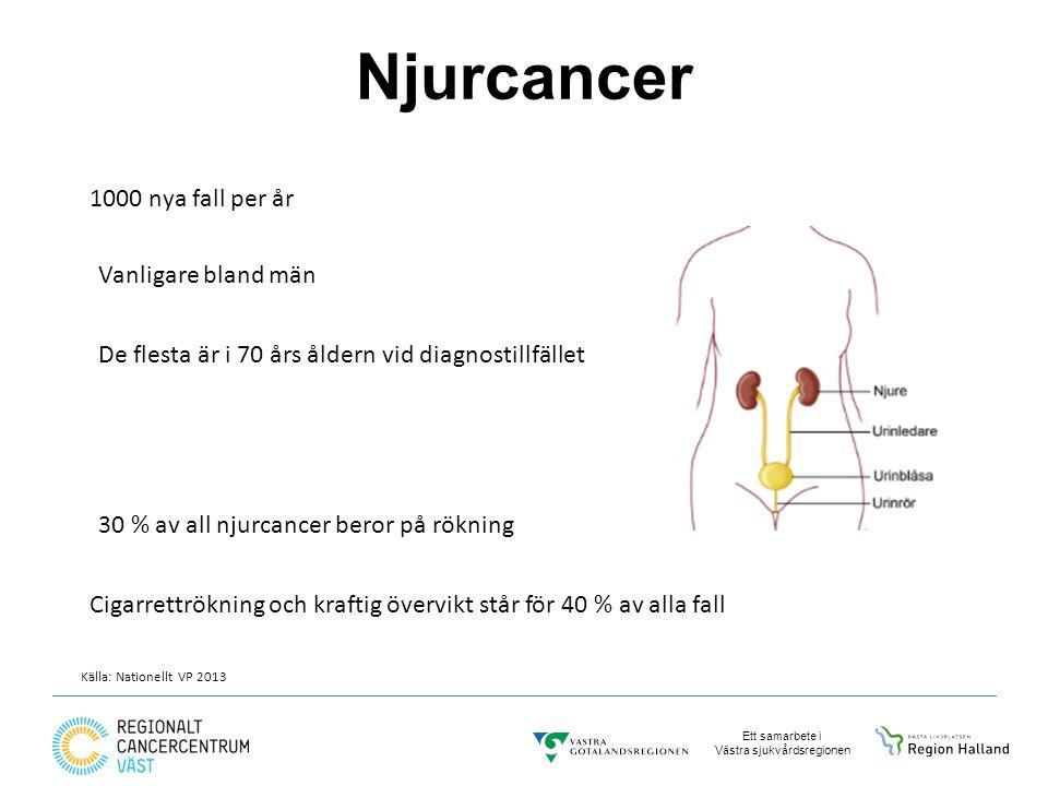 Njurcancer 1000 nya fall per år Vanligare bland män
