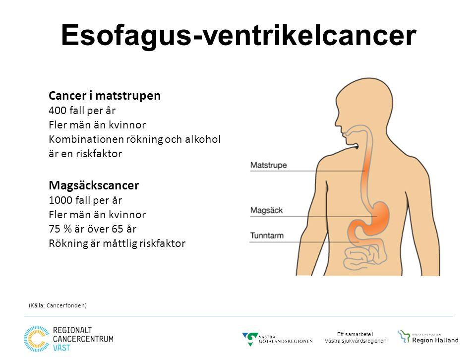 Esofagus-ventrikelcancer