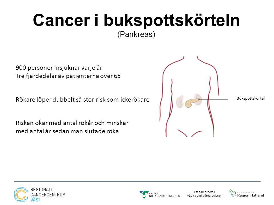 Cancer i bukspottskörteln (Pankreas)