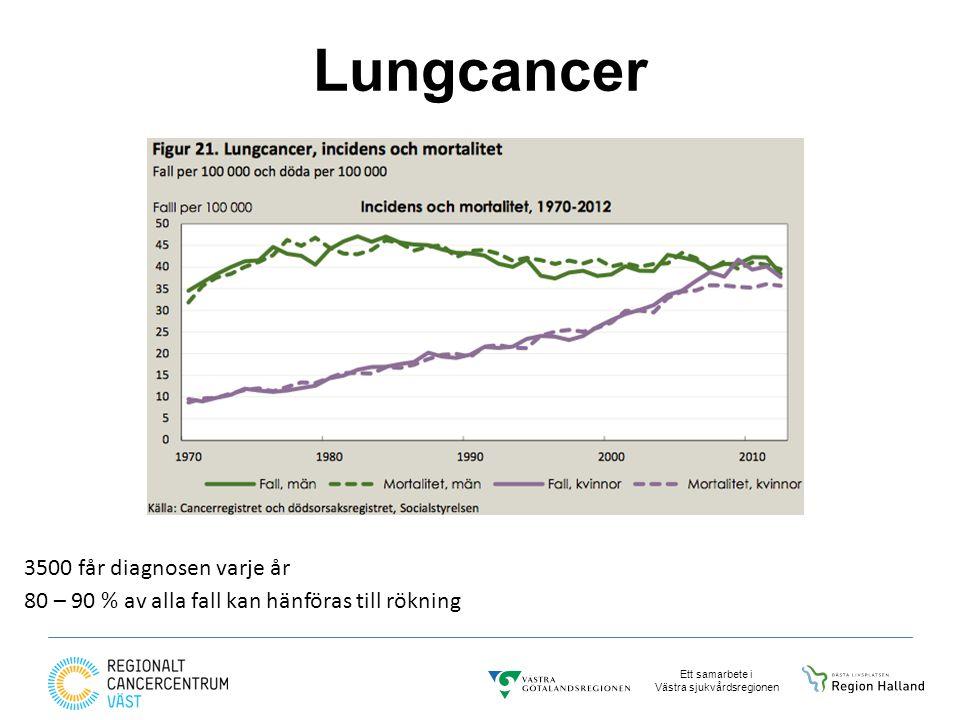 Lungcancer 3500 får diagnosen varje år