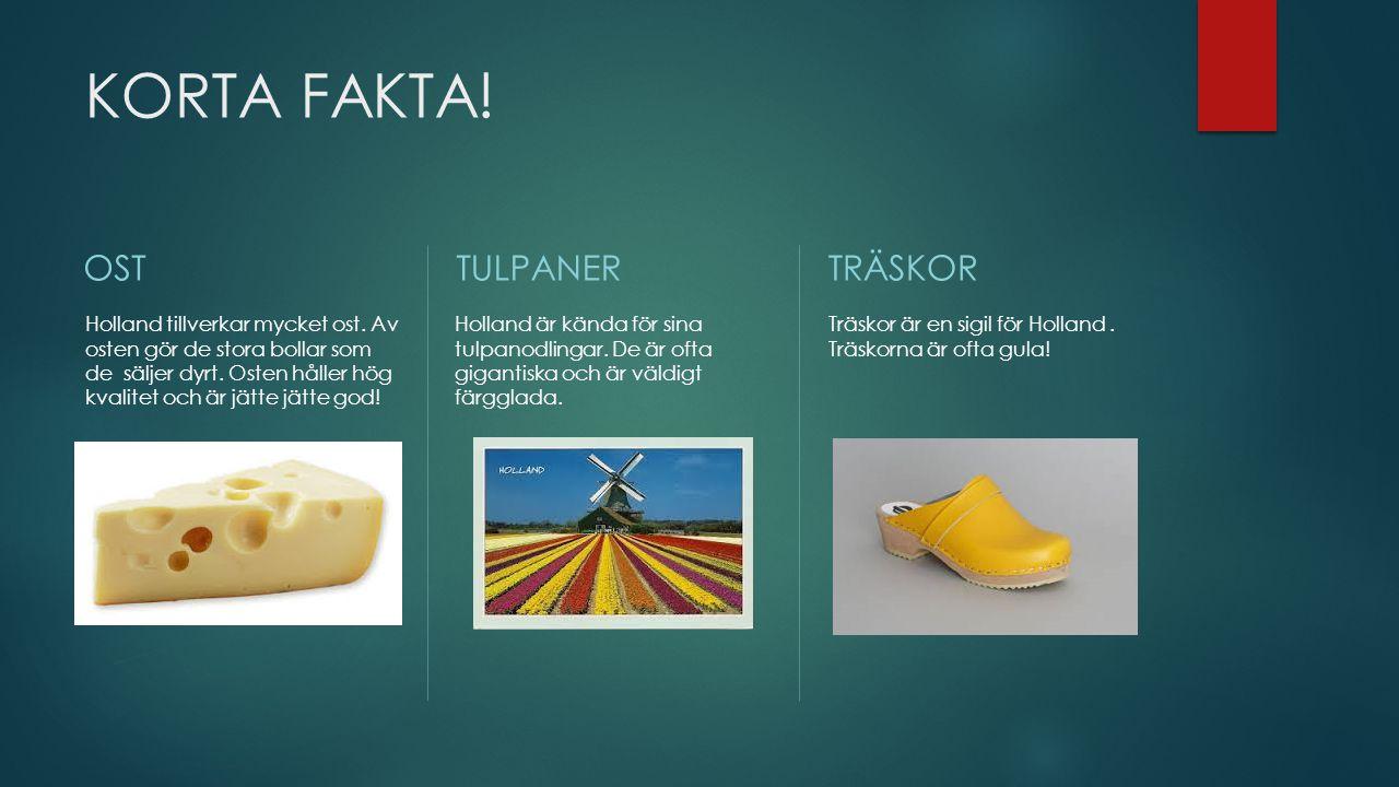 KORTA FAKTA! OST TULPANER TRÄSKOR