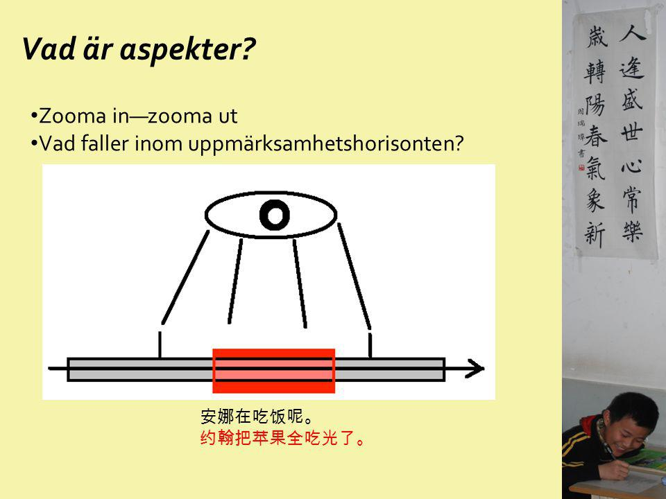 Vad är aspekter Zooma in—zooma ut