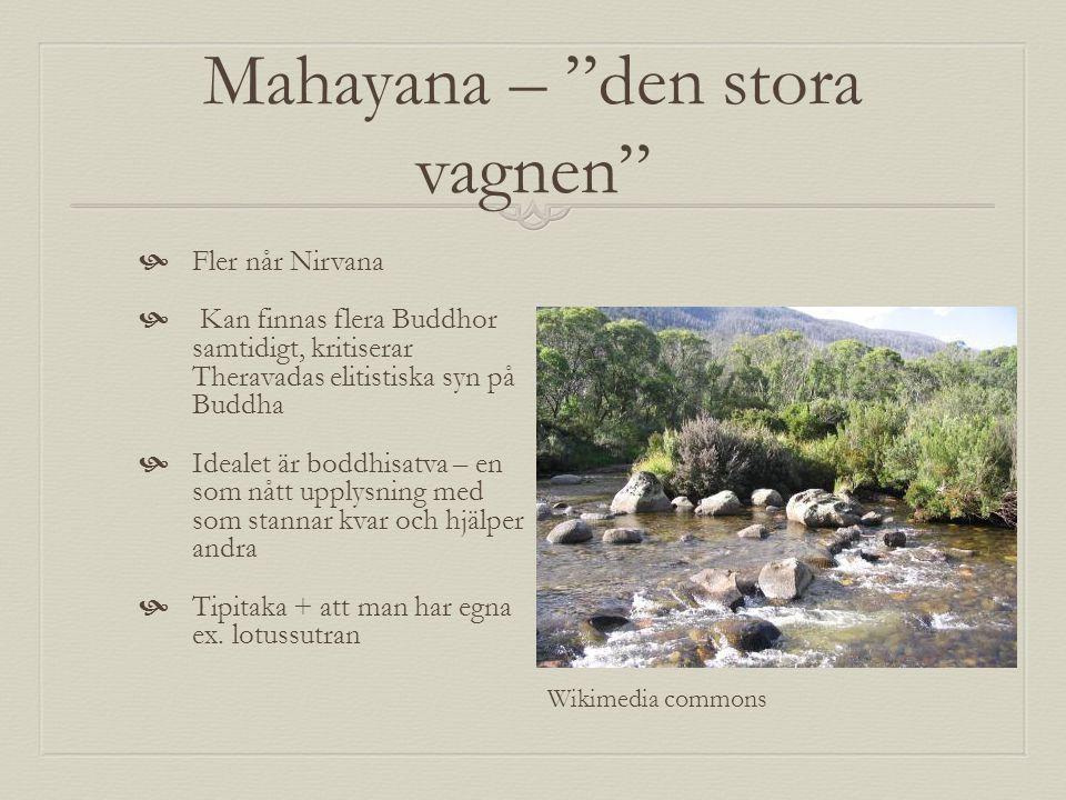 Mahayana – den stora vagnen