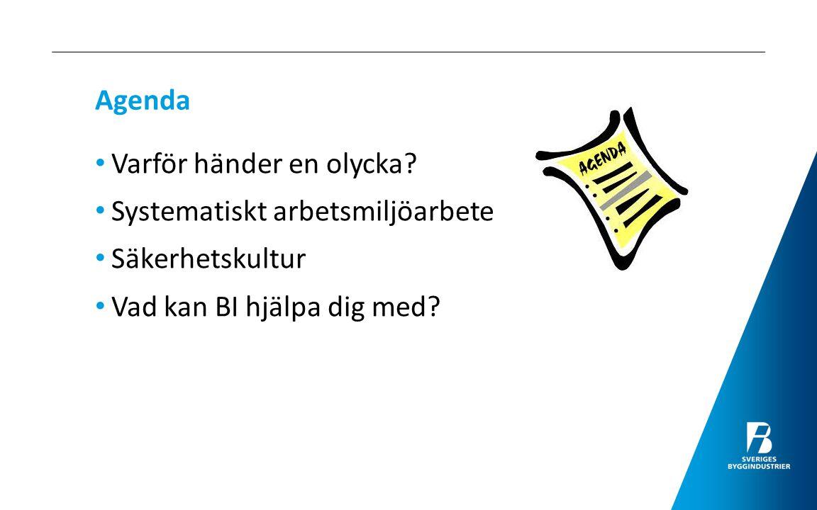 Agenda Varför händer en olycka. Systematiskt arbetsmiljöarbete.