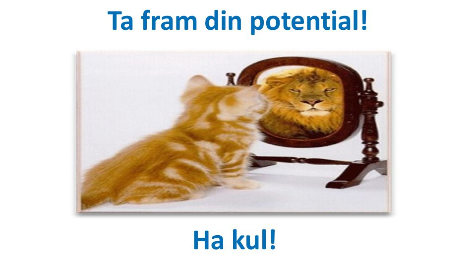 Ta fram din potential! Ha kul!