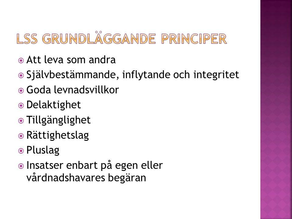 LSS grundläggande principer