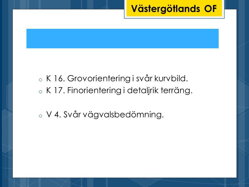 Västergötlands OF K 16. Grovorientering i svår kurvbild.