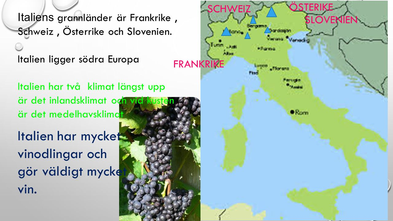 Italien har mycket vinodlingar och gör väldigt mycket vin.
