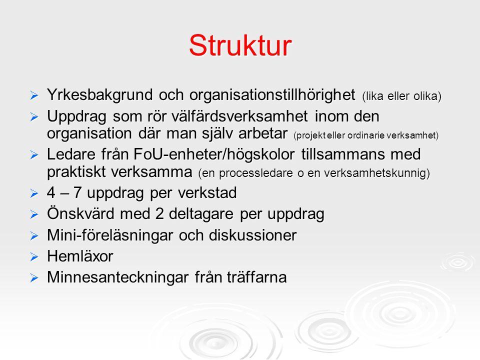 Struktur Yrkesbakgrund och organisationstillhörighet (lika eller olika)