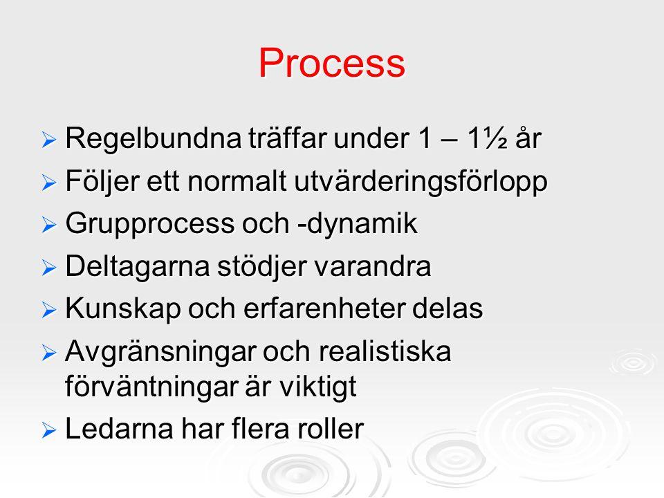 Process Regelbundna träffar under 1 – 1½ år