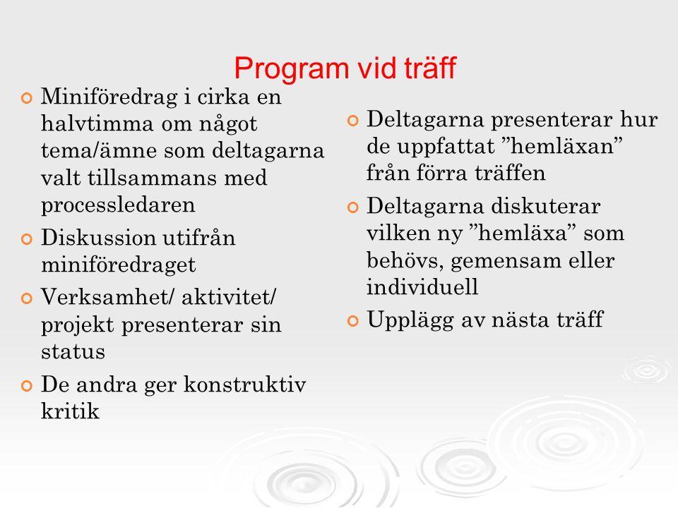 Program vid träff Miniföredrag i cirka en halvtimma om något tema/ämne som deltagarna valt tillsammans med processledaren.