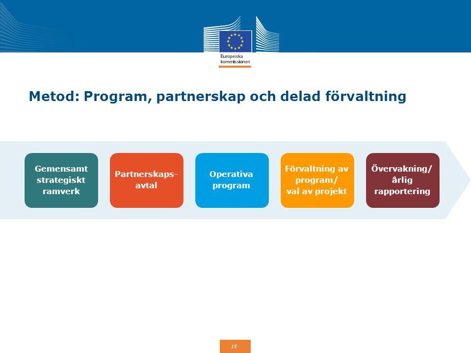 Metod: Program, partnerskap och delad förvaltning