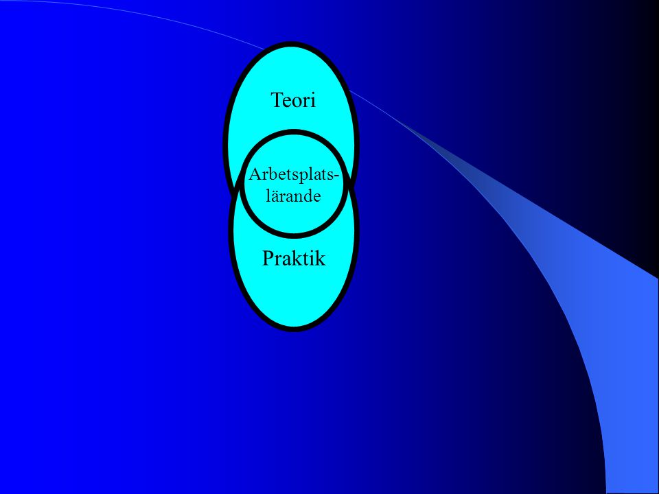 Teori Praktik Arbetsplats- lärande